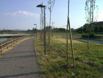 Reggio. Isola sportiva al parco Ottavi, Comune vince un finanziamento