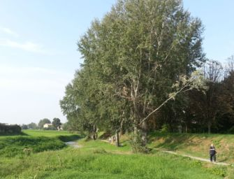Mab Unesco. Reggio inserita nella Riserva Biosfera dell'Appennino tosco-emiliano