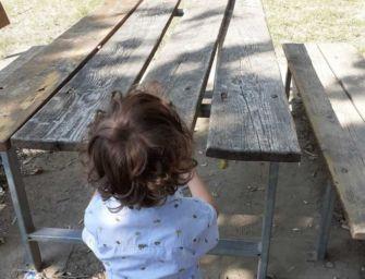 La denuncia di Cadelbosco per Tutti: ancora atti vandalici nei parchi