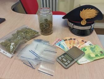 Villa Minozzo. A casa la marijuana, nello smartphone le prove dello spaccio: arrestato ragazzo di 20 anni