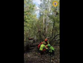 Fungaiolo di 73 anni cade e si infortuna sulle colline di Grizzana Morandi: recuperato con l'elisoccorso